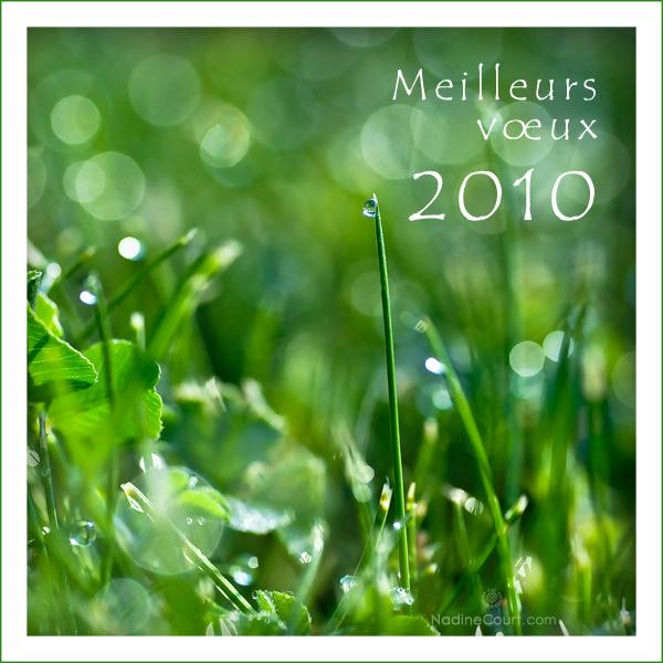 Carte-de-voeux-2010_010